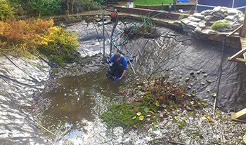Pond and Koi Specialists in East Sussex maintenance contracts