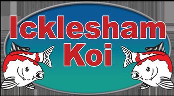 Icklesham Koi logo