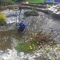 Pond & Koi Specialists in East Sussex maintenance contracts